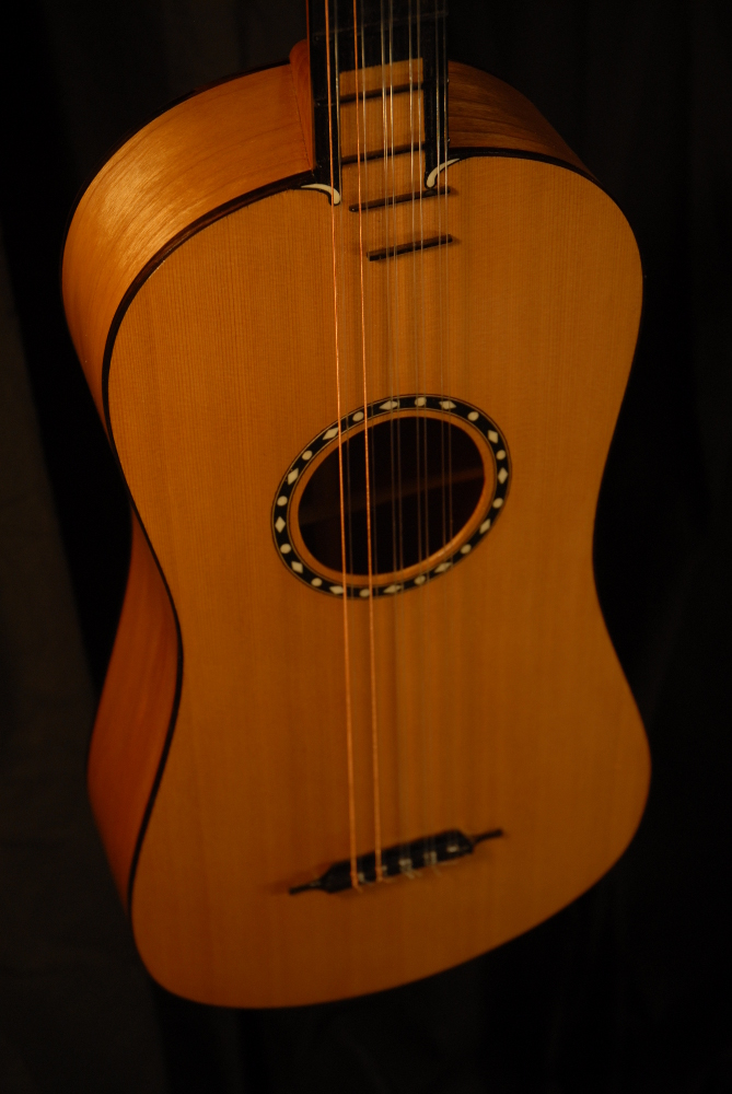 front view of the body of michael mccarten's 10 string baroque guitar model