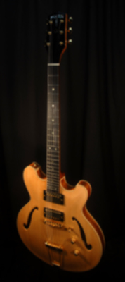 front view of michael mccarten's DC16 double cutaway semi hollowelectric guitar model